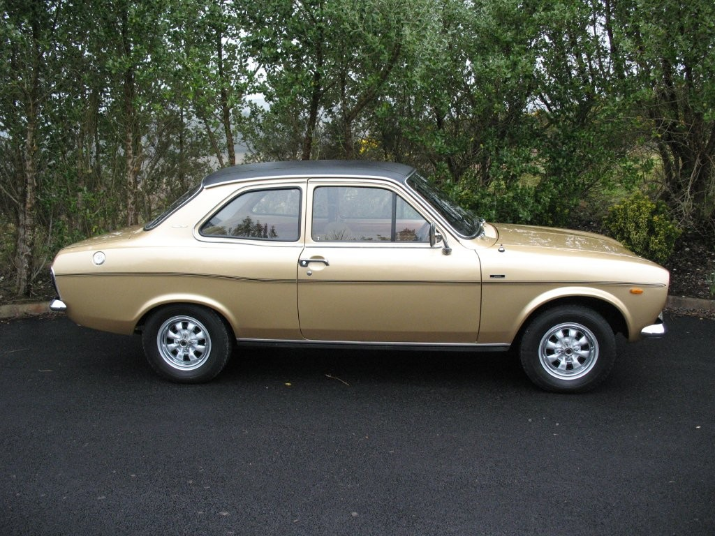 escort gold ford